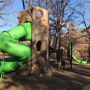 Toledo Metroparks - Oak Openings  gallery thumbnail